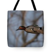 Green-winged Teal Flies Over Tote Bag