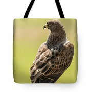Greeting Dawn Tote Bag