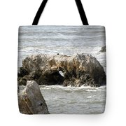 Grey Water At Window Rock Tote Bag