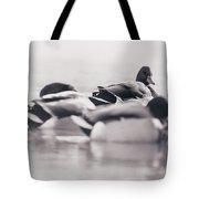 Group Of Ducks Tote Bag