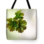 Growing Red Currant Tote Bag