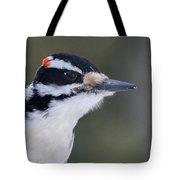 Hairy Woodpecker Male Tote Bag