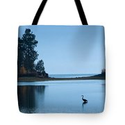 Hanging Out At Sunnyside Tote Bag