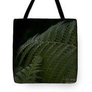 Hapuu Pulu Hawaiian Tree Fern  Tote Bag