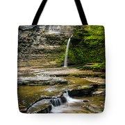Havana Glen's Eagle Falls Tote Bag