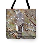Hawk Eye 3 Tote Bag