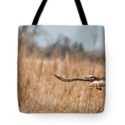 Hawk Soaring Over Field Tote Bag