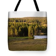 Hayden Valley 2 Tote Bag