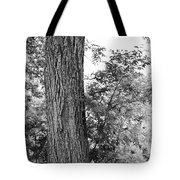 Heaven's Tree Tote Bag