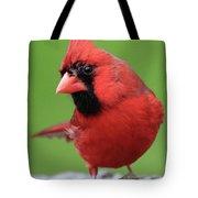 Hello Cardinal Tote Bag