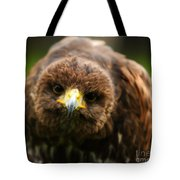 Hello Mate Tote Bag