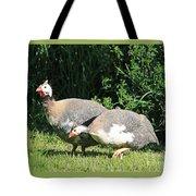 Helmeted Guineafowl Tote Bag