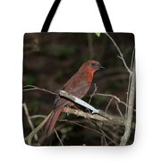 Hepatic Tanager At The Coba Ruins Tote Bag