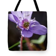 Hepatica 4 Tote Bag
