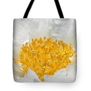 Herbaceous Peony 2 Tote Bag