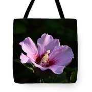 Hibiscus Light Tote Bag