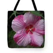 Hibiscus - Turn Of The Century Tote Bag