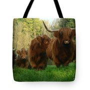 Highland Cows Tote Bag