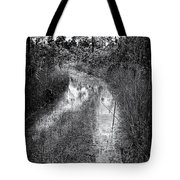 Hiking Trail  Tote Bag by Rudy Umans