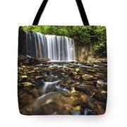 Hoggs Falls Tote Bag