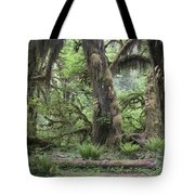 Hoh Rain Forest 3381 Tote Bag