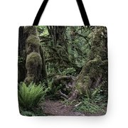 Hoh Rain Forest 3389 Tote Bag