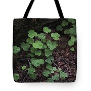 Hoh Rain Forest 3393 Tote Bag