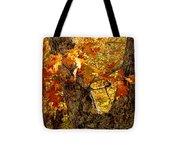 Hometown Series - Deep In The Woods Tote Bag