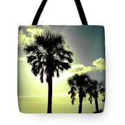 Honeymoon Island Sunset Tote Bag