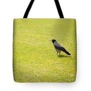 Hooded Crow Bird Gathering Hay Tote Bag