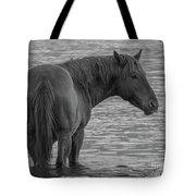 Horse 10 Tote Bag