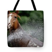 Horse Bath II Tote Bag