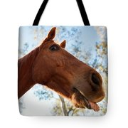 Horse In The Paddock Tote Bag