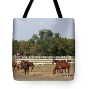 Horses Eat Hay On Ranch Tote Bag