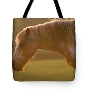 Horses In The Evening Light Tote Bag