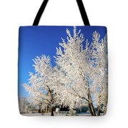 House On The Outskirts 2 Tote Bag