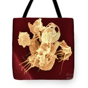 Human Thrombocytes Platelets, Sem Tote Bag