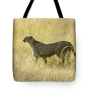 Hunting Cheetah Tote Bag