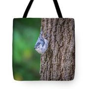 Huthatch Bird  Nut Pecker In The Wild On A Tree Tote Bag