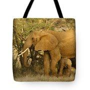 I Love My Big Mama Tote Bag