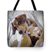 Iced-lolly Tote Bag