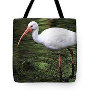 Ibis In The Marsh Tote Bag