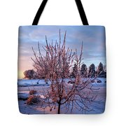 Icy Tree At Sunset  Tote Bag