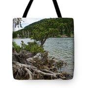 Idaho Lake Tote Bag