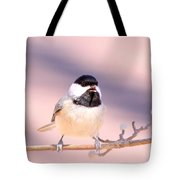 Img_0001 - Carolina Chickadee Tote Bag