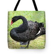 In Search Of A Mate 2 Tote Bag