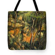In The Park Of Chateau Noir Tote Bag