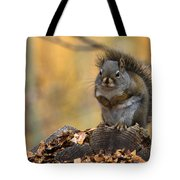 In The Pines Tote Bag