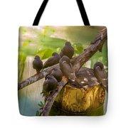 Inca Terns Tote Bag by Richard J Thompson