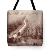 India Laundry In Canal Tote Bag
